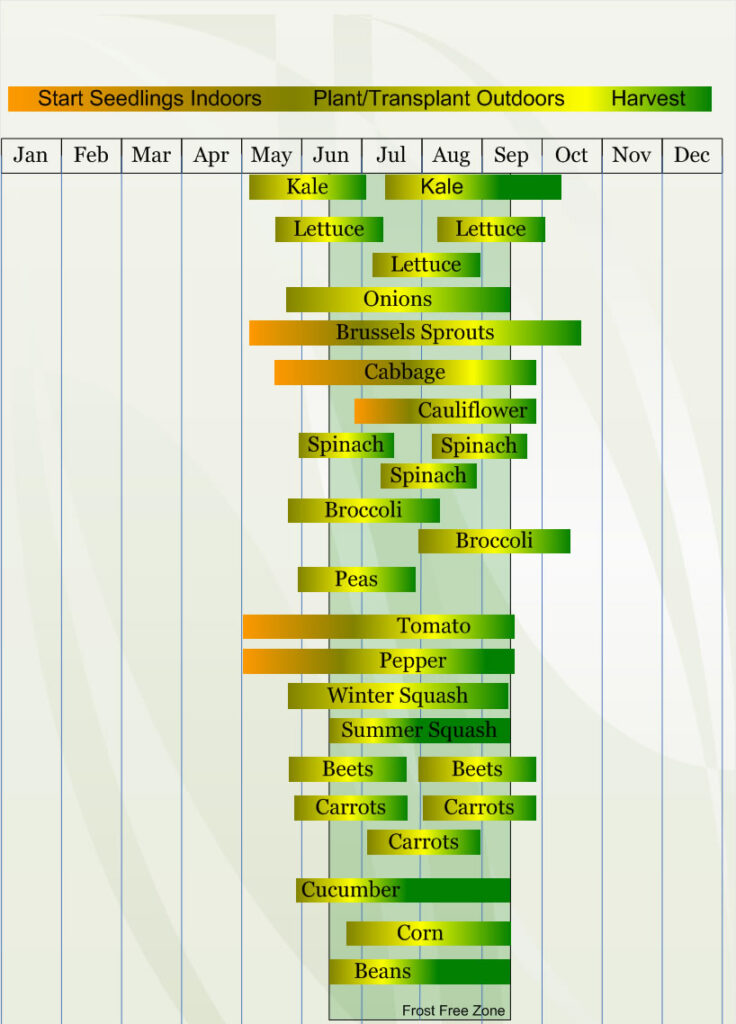 Zone 4 Vegetable  planting calendar describing approximate dates to start vegetable  plants indoors and outdoors relative to specific USDA Plant Hardiness  Zones.