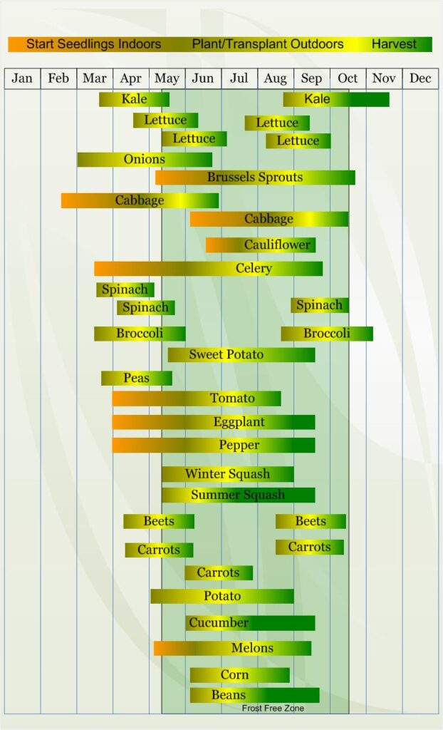 Zone 6 Vegetable  planting calendar describing approximate dates to start vegetable  plants indoors and outdoors relative to specific USDA Plant Hardiness  Zones.