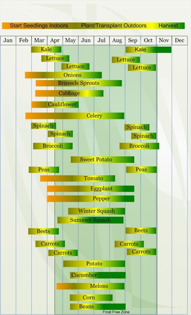 Zone 7 Vegetable  planting calendar describing approximate dates to start vegetable  plants indoors and outdoors relative to specific USDA Plant Hardiness  Zones.