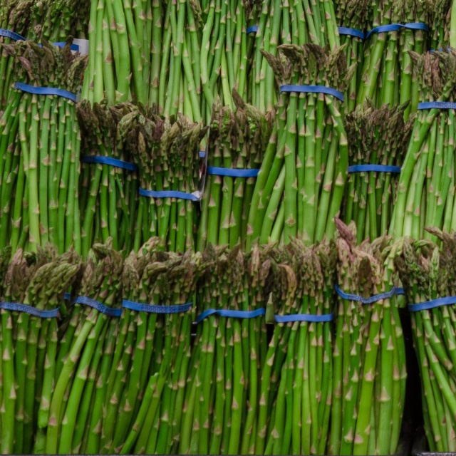 Asparagus Growing And Harvest Information Veggieharvest Com